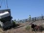 Camión con ganado vuelca en Torrejoncillo