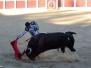 Emilio de Justo en Hervas 14/09/2012