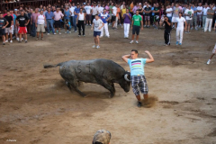 Fiestas de Agosto 2011 - Eventos taurinos