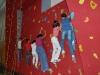 www.torrejoncillotodonoticias.com_inauguracion_rocodromo_ieso_via_dalmacia_torrejoncillo_-_2009_0002