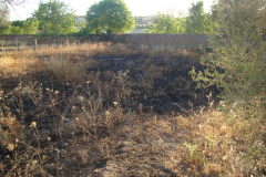 Pequeño Incendio en Torrejoncillo