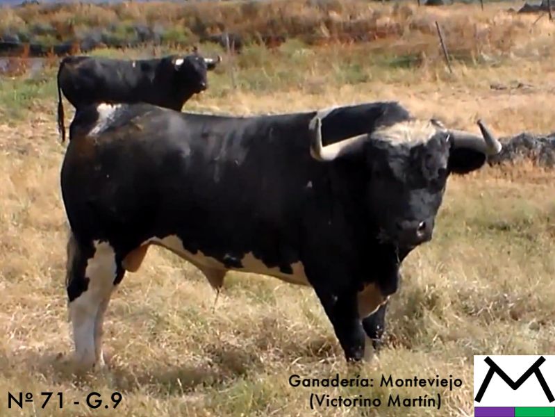 monteviejo-n-71-guarismo-9