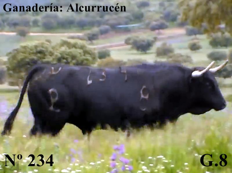 n-234-g-8-alcurrucen-si