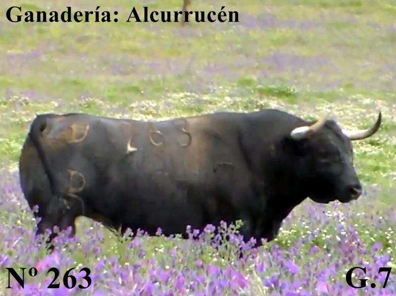 n-263-g-7-alcurrucen-si