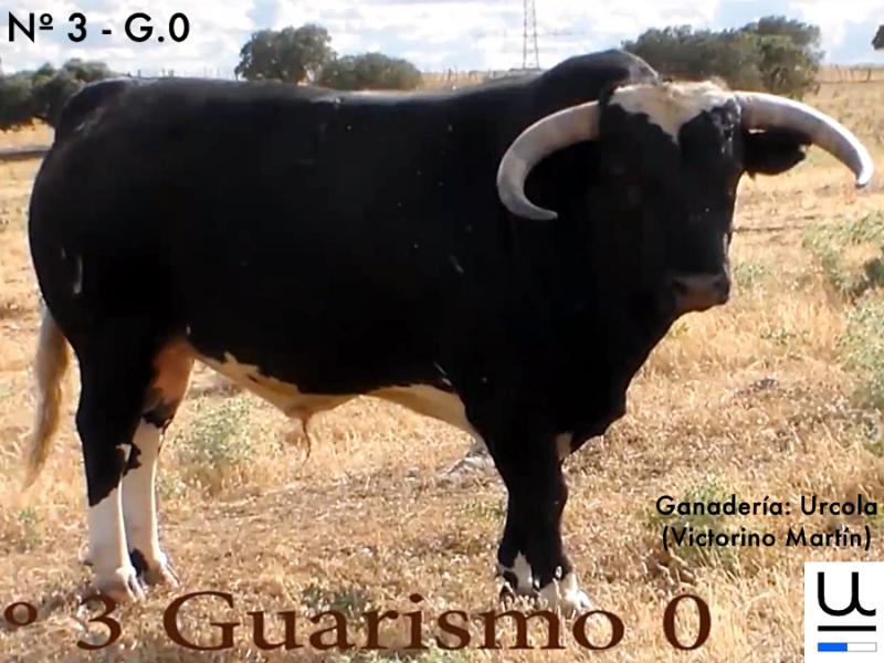 urcola-n-3-guarismo-0