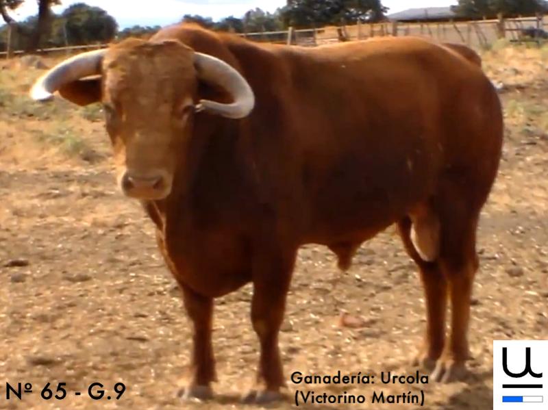 urcola-n-65-guarismo-9
