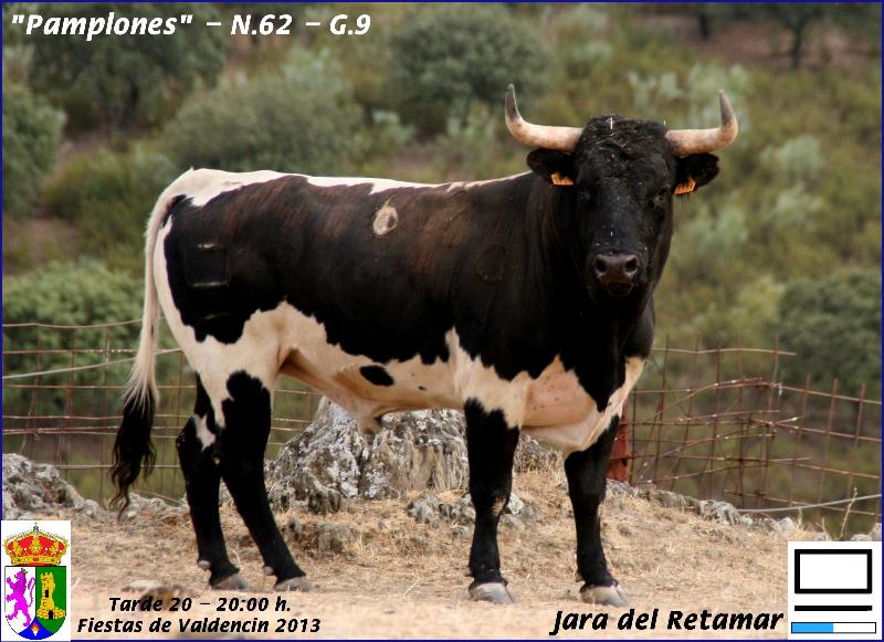 20-tarde-jara-del-retamar-pamplones-n-62-g-9