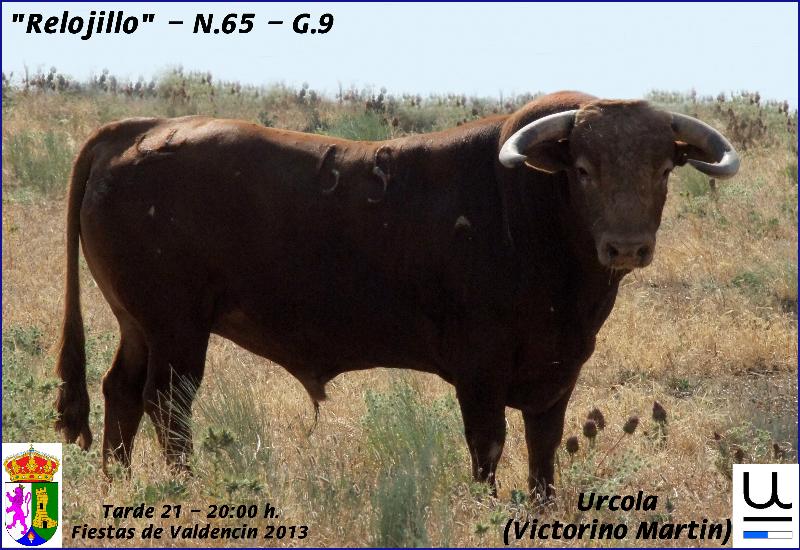 21-tarde-urcola-relojillo-n-65-g-9