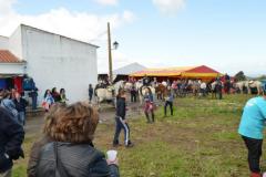 Romería de Valdencín 2013