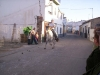 www.torrejoncillotodonoticias.com_romeria_-_2008_0020