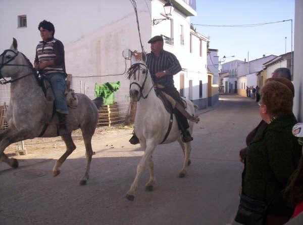 www.torrejoncillotodonoticias.com_romeria_-_2008_0008