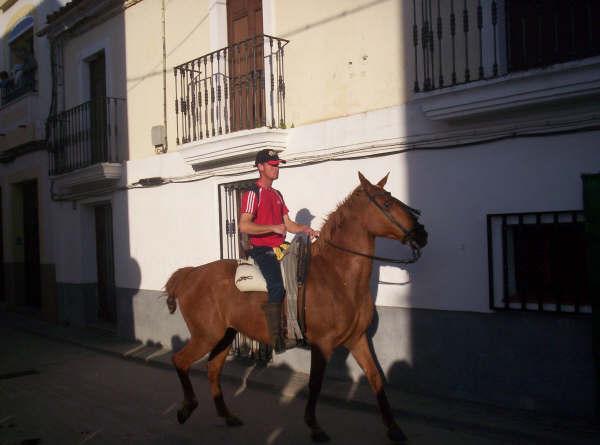 www.torrejoncillotodonoticias.com_romeria_-_2008_0012