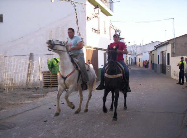www.torrejoncillotodonoticias.com_romeria_-_2008_0022