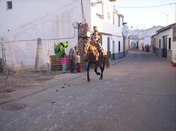 www.torrejoncillotodonoticias.com_romeria_-_2008_0023