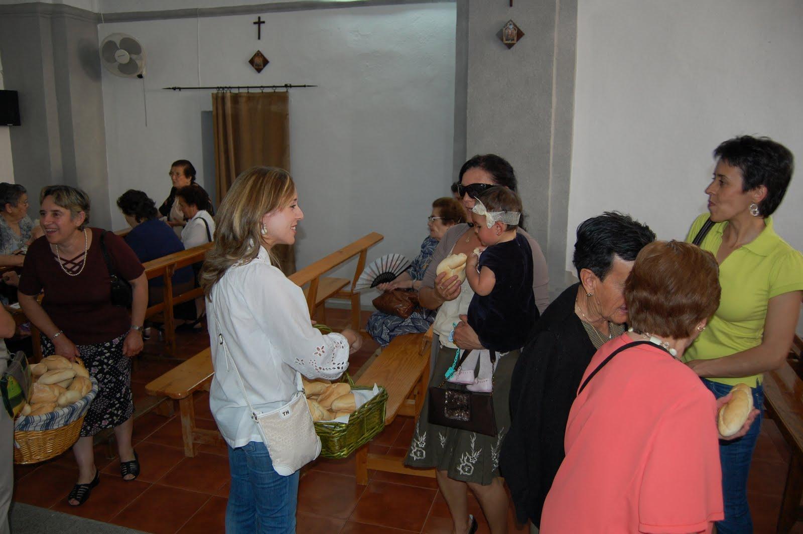 www.torrejoncillotodonoticias.com_san_antonio_-_2010_0045