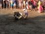 Toros de Valdencin 2013