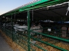www.torrejoncillotodonoticias.com_xiv_feria_del_caballo_y_la_artesania_de_torrejoncillo_-_2010_0015