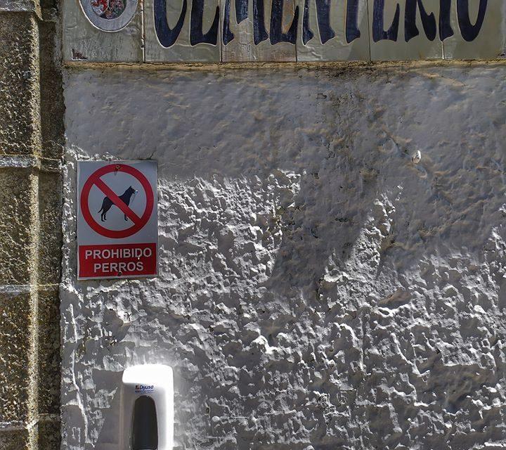 Dispensadores de gel desinfectante en lugares públicos