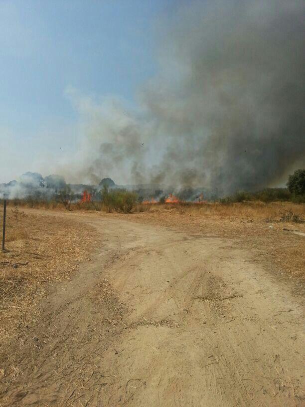 Segundo incendio en Torrejoncillo en las últimas 24 horas