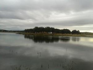 Mañana de pesca muy poco apacible la que acompañó al concurso - EQUIPO EMBRAU