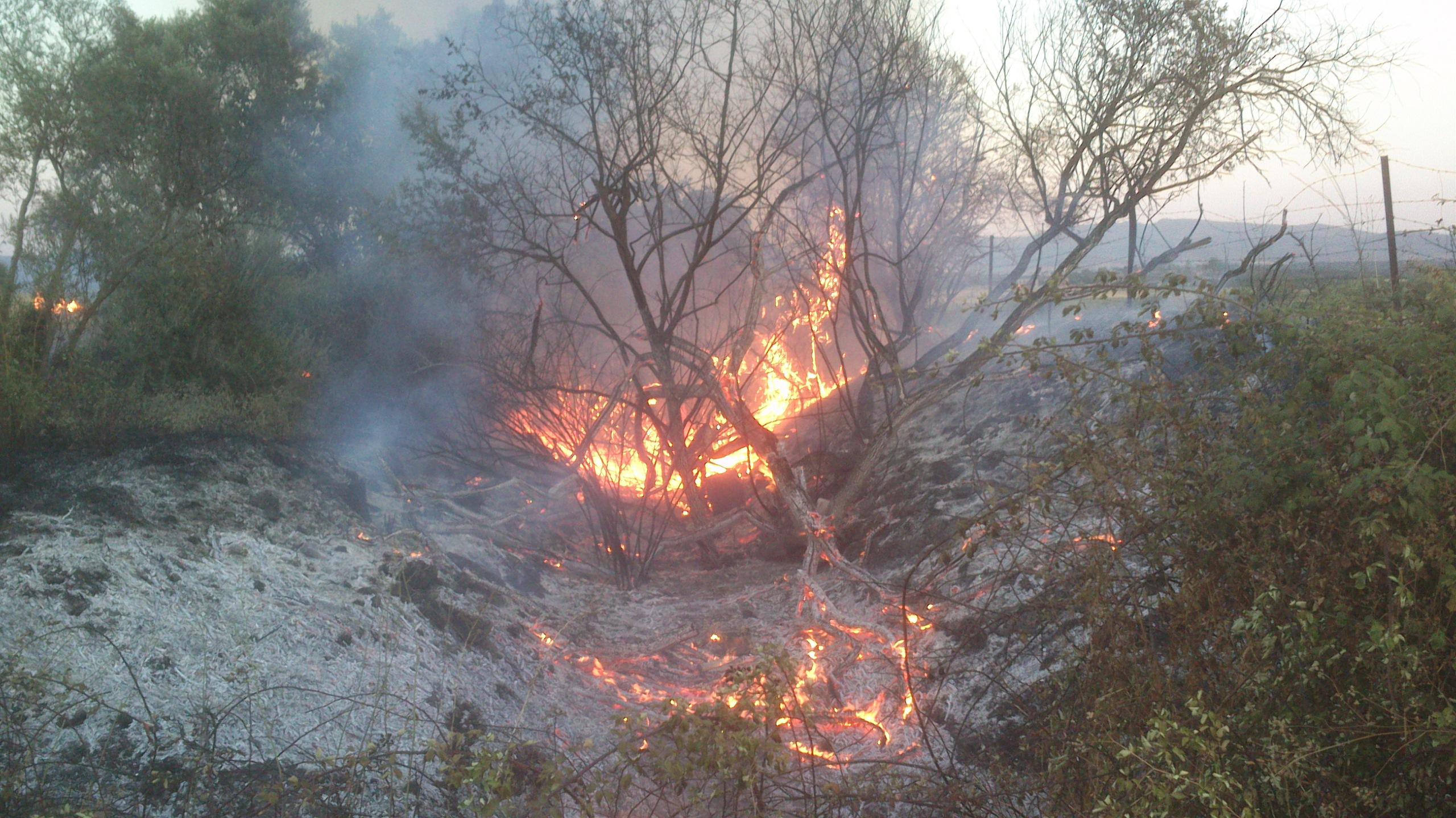 Tercer fuego de este verano en la zona de las Viñas de las Amargas