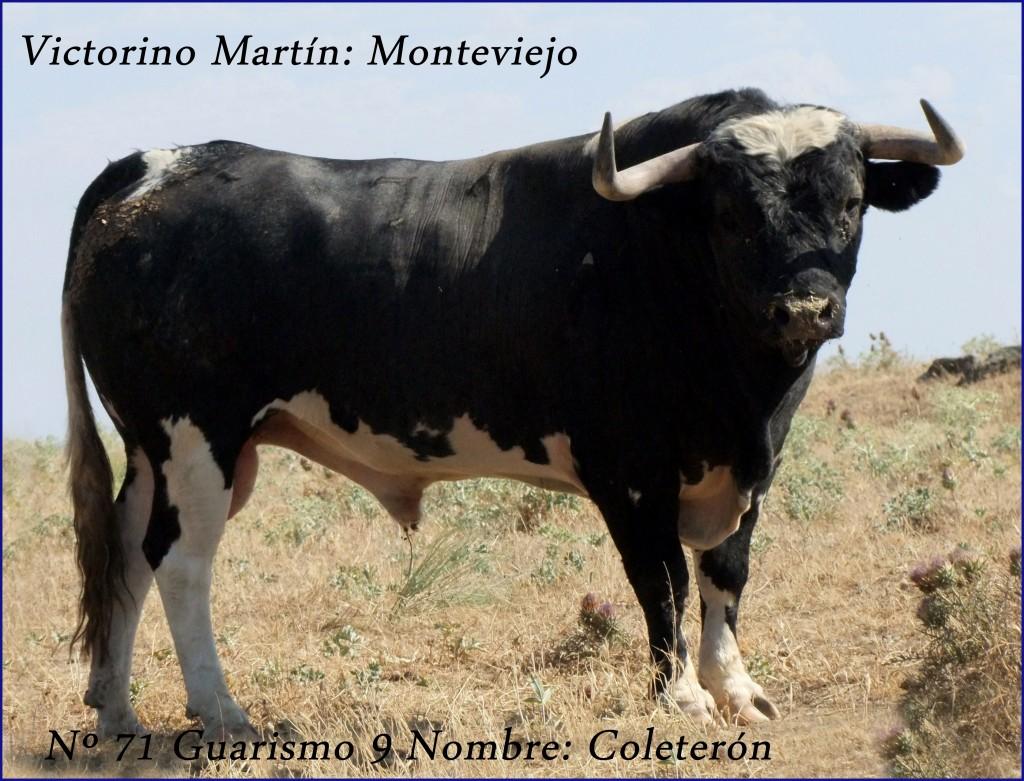 71 G9 COLETERON VICTORINO MARTIN MONTEVIEJO