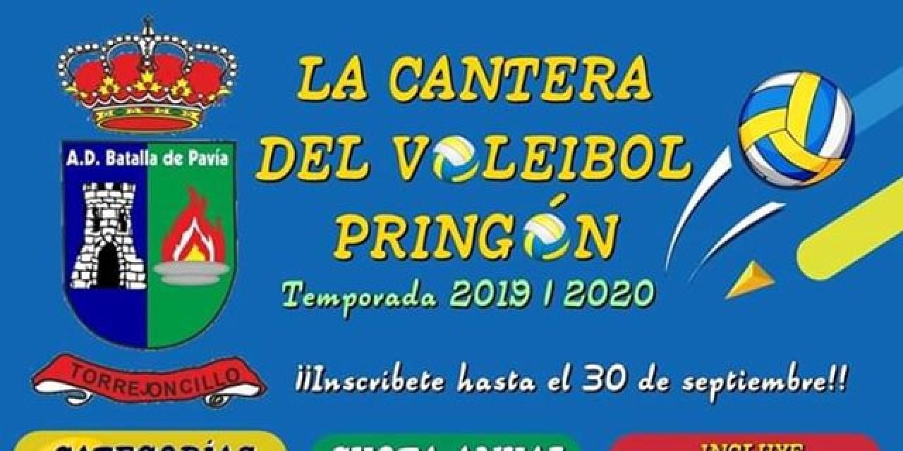 La cantera del Voleibol Pringón