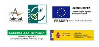 Convocatorias de ayudas para 2013 de ADESVAL en el programa Enfoque Leader