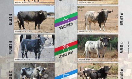 Bases del Concurso Fotográfico «Toros de Agosto 2019»