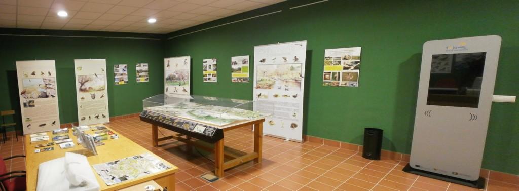 Sala de interpretación ambiental - CEDIDA