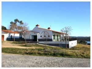 El Bar situado en el recinto del Ejido de San Pedro fue uno de los lugares de acción de los ladrones - ISMAEL DUARTE