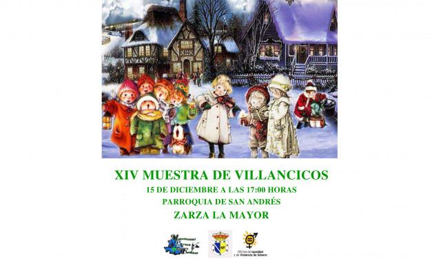 XIV Muestra de Villancicos de la Mancomunidad Rivera de Fresnedosa