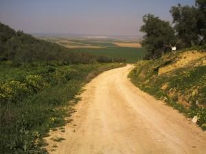 Agricultura ha comprometido ya el 82 por ciento del presupuesto anual para caminos rurales