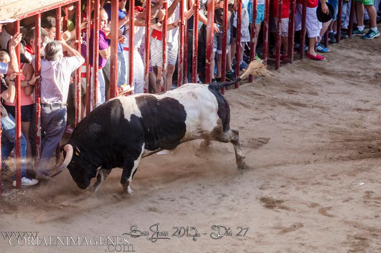 Los Sanjuanes de Coria finalizan con seis heridos por asta de toro
