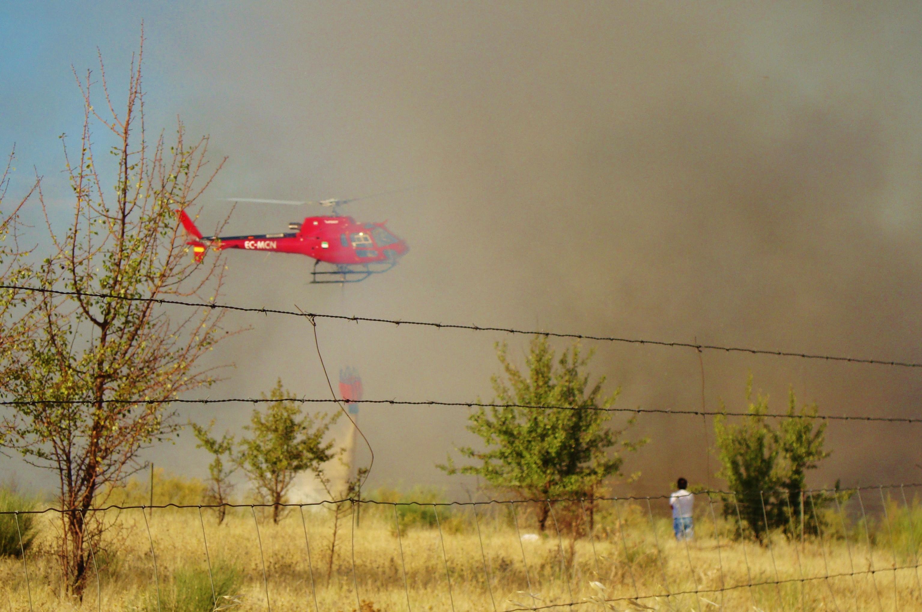 Incendio en la «Viña de las Amargas»