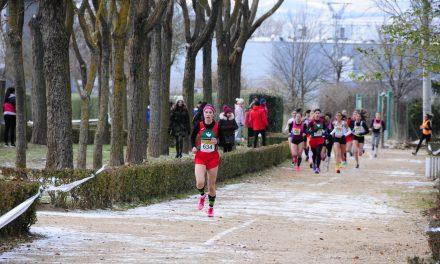 38 atletas extremeños viajan a Aranda de Duero para participar este fin de semana en el prestigioso Cross de la Constitución