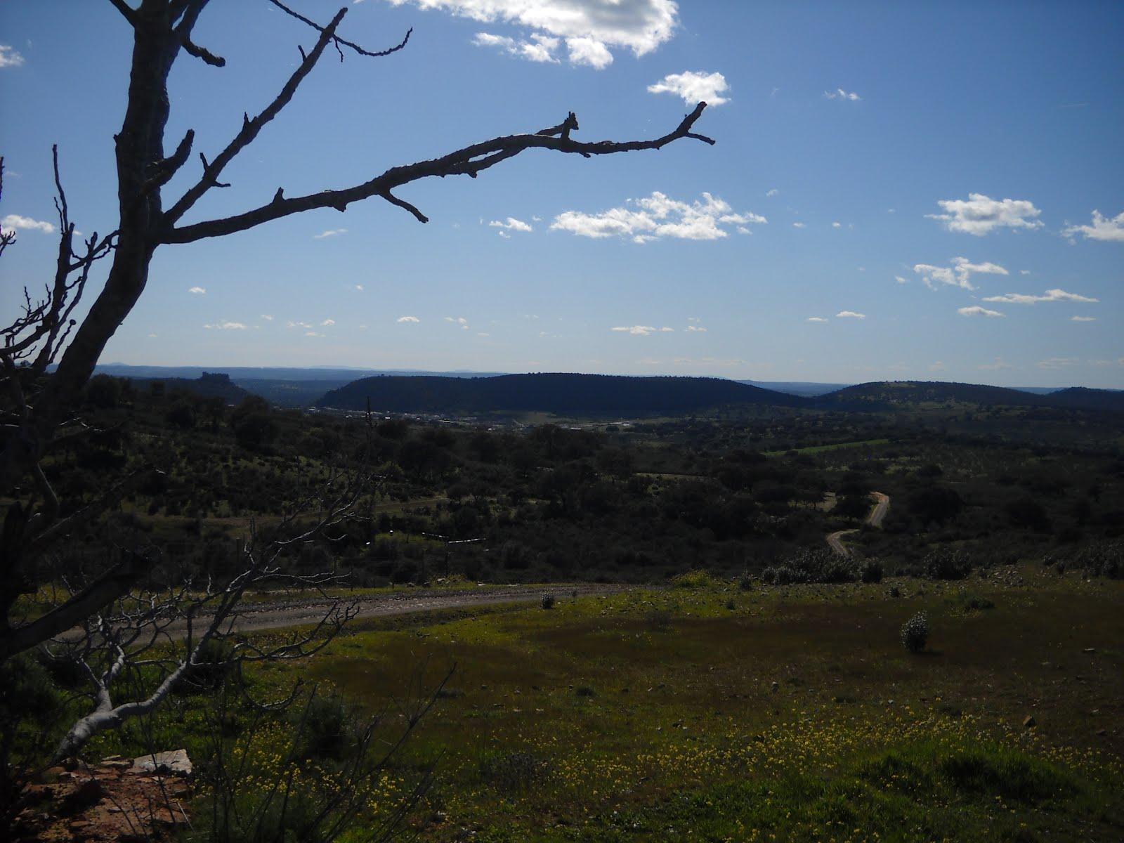 La III BTT Fresnedosa reune este Sábado a 200 ciclistas en Primavera en Torrejoncillo