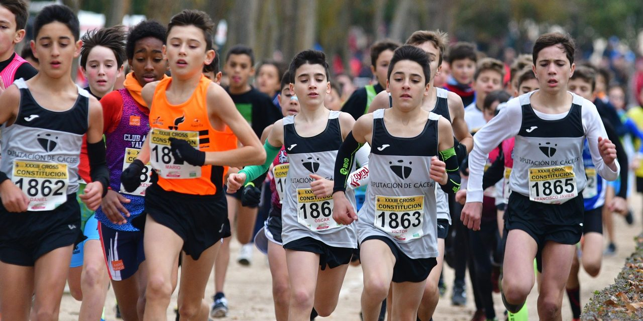 Treinta y ocho atletas extremeños viajan a Aranda de Duero para participar en el XXXIV Cross de la Constitución