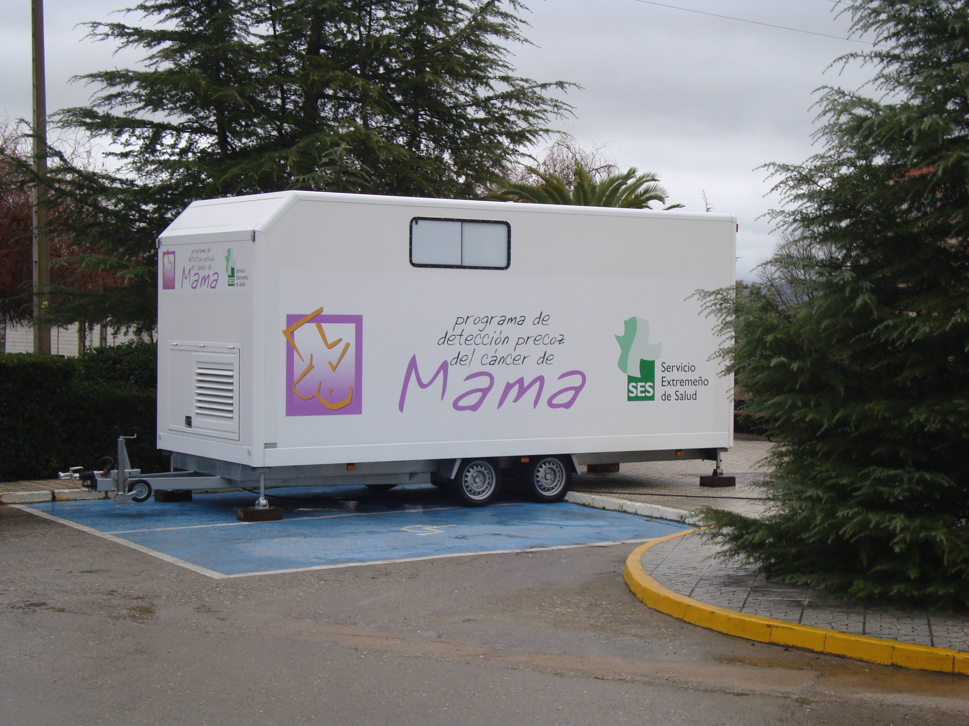 El Cáncer de Mama se puede curar