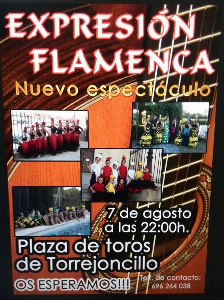 Esta noche «Expresión Flamenca» en la Plaza Mayor