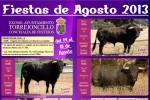 Cartel Oficial de las Fiestas de Agosto de Torrejoncillo 2013 - AYTO. DE TORREJONCILLO