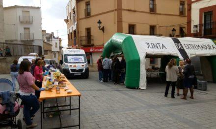 Programa de la II Feria de la Salud de Torrejoncillo