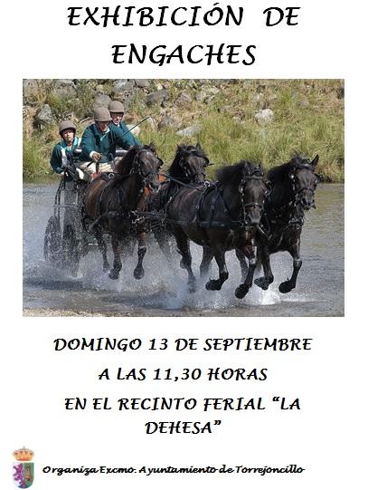 Exhibición de Enganches en Torrejoncillo
