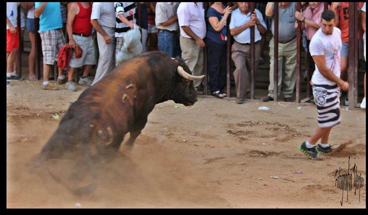 """Dos últimos días para presentar trabajos al II Concurso Fotográfico """"Toros de Torrejoncillo 2013"""