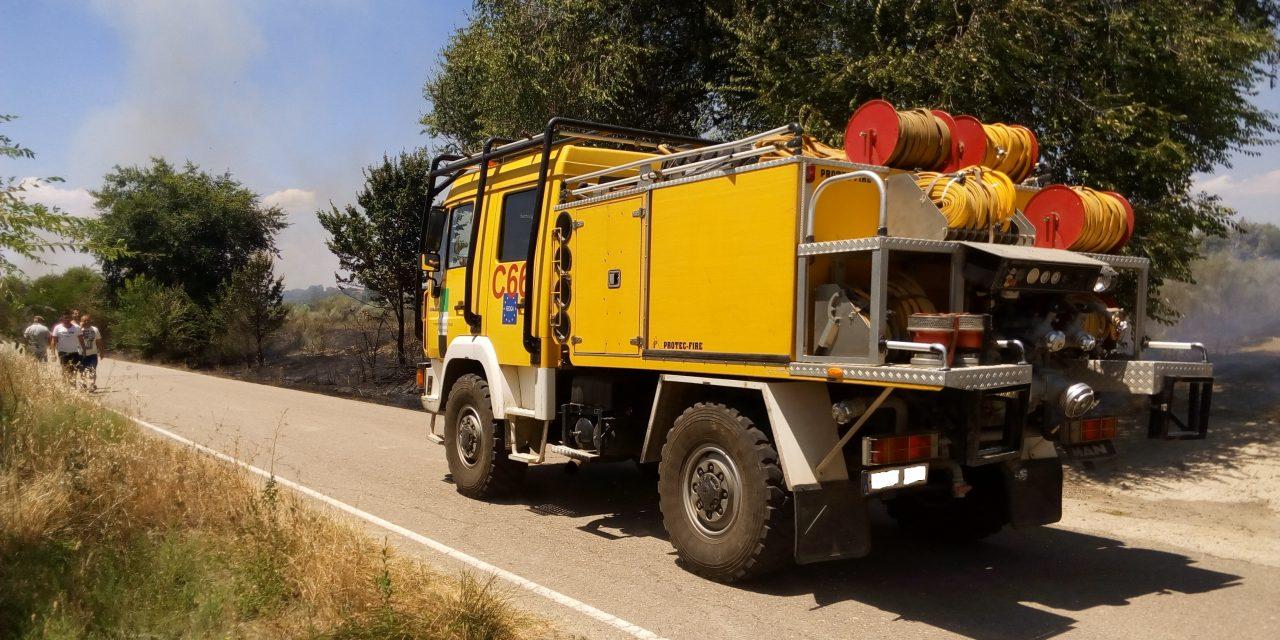 Primer incendio importante del año en Torrejoncillo