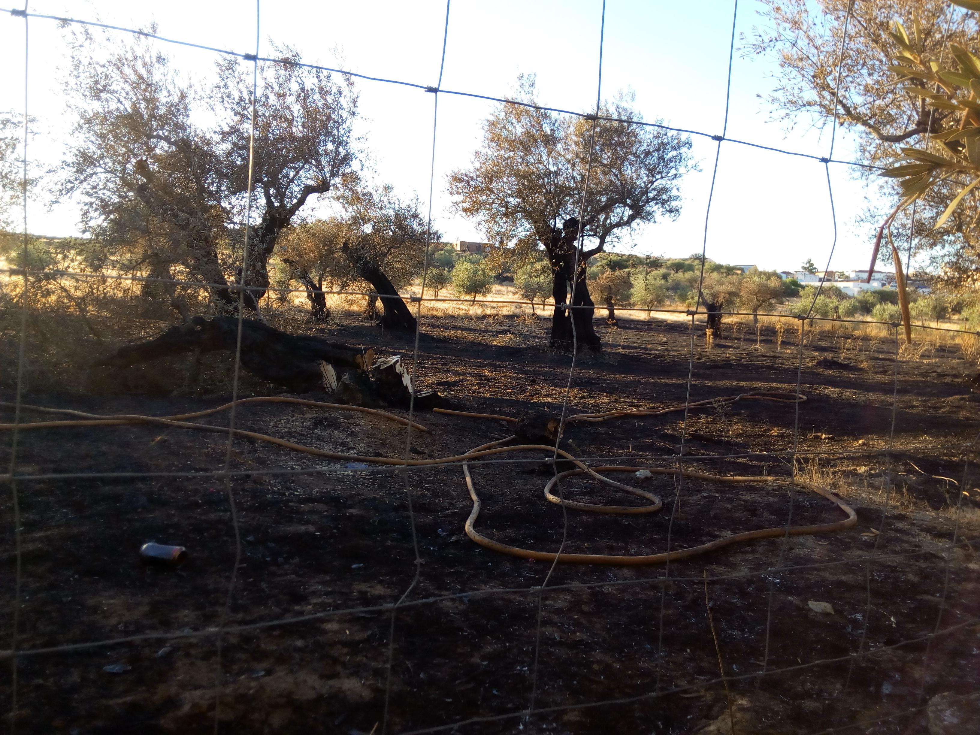 Varios conatos de incendio durante los dos últimos días