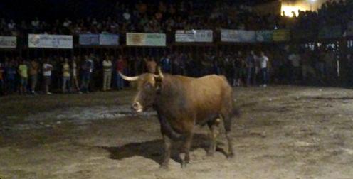 Un bravo toro de Jara del Retamar inauguró los festejos taurinos de Valdencín