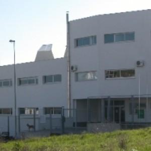 IESO Vía Dalmacia de Torrejoncillo - CEDIDA