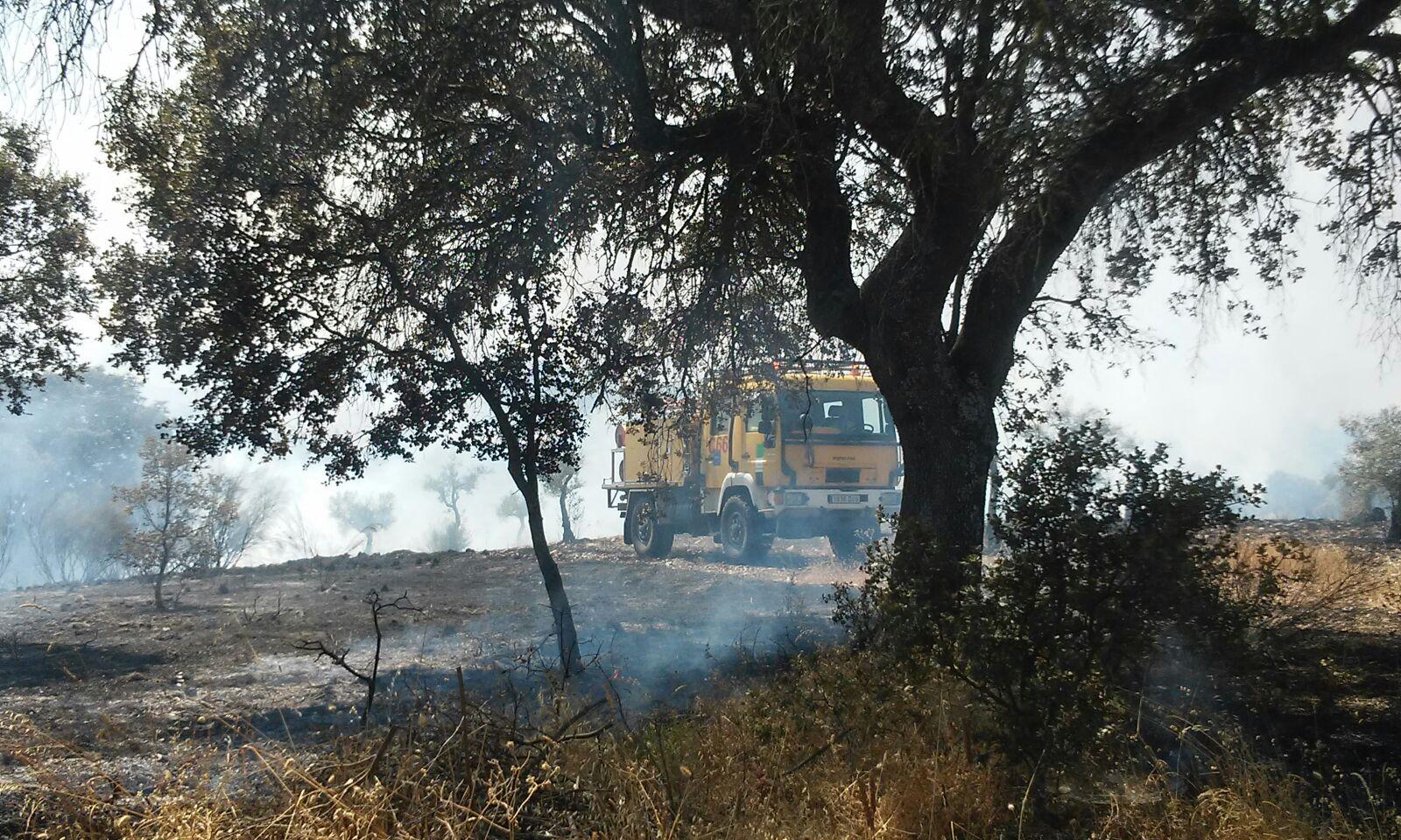 Incendio en el paraje de «La Esparraguera»