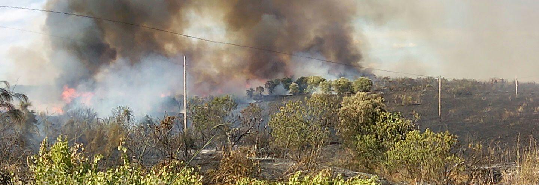 Comienza la temporada de incendios en Torrejoncillo